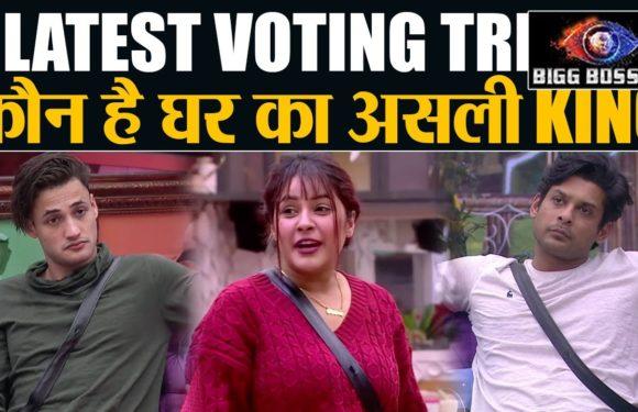 Bigg Boss 13 LATEST VOTING TREND: Siddharth vs Asim vs Shehnaz कौन है असली KING| Shudh Manoranjan