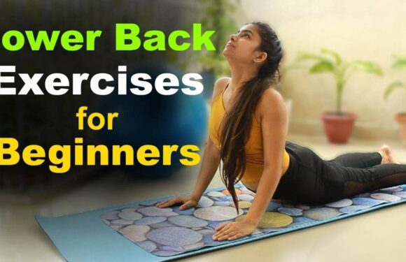 Back Pain Exercise in Hindi | Lower Back Pain Relief Exercises in Hindi